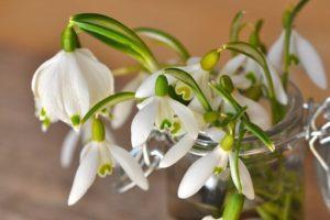 Fleur-bouquet